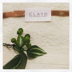 CLAYD2
